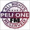 PELI ONE FM Boxes